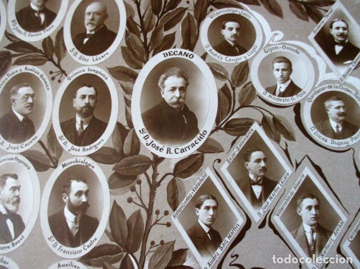 Fotografía antigua: Gran orla de la Facultad de Farmacia de Madrid. Curso 1912-13. Mide 66 x 53 cm.incluyendo paspartú. - Foto 4 - 130612994
