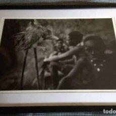 Fotografía antigua: FOTOGRAFÍA A GRAN TAMAÑO. LARRY LOUIE. HUNTING WITH DE HAZABES. ETIQUETA: 840€. Lote 131307199