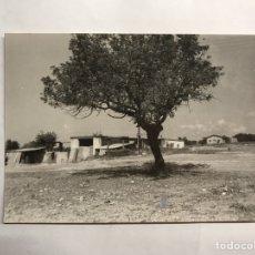Fotografía antigua - MONCADA (Valencia) Fotografía alrededores del Camino de Moncada. Verano de 1973 - 132961399
