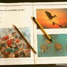 Fotografía antigua: DOSSIER FOTOGRAFIAS GANADORAS CONCURSO FOTOGRAFICO PNUMA (1992) LAS MEJORES FOTOS MEDIOAMBIENTALES. Lote 133238122