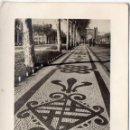 Fotografía antigua: FRANCISCO CATALÀ ROCA PREMIO CIUDAD DE BARCELONA 1952 - INFONAL. Lote 134018134