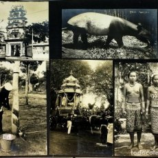 Fotografía antigua: AROUND THE WORLD S.S. RESOLUTE 1927. ALBUM FOTOGRÁFICO. 470 IMÁGENES APROX. U.S.A. 1927. Lote 141910898