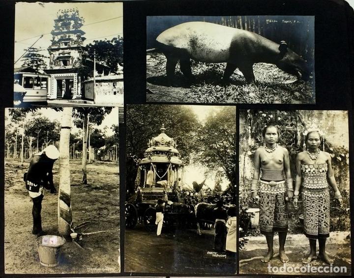 Fotografía antigua: AROUND THE WORLD S.S. RESOLUTE 1927. ALBUM FOTOGRÁFICO. 470 IMÁGENES APROX. U.S.A. 1927 - Foto 18 - 141910898