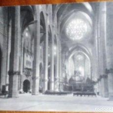 Fotografía antigua: PALMA MALLORCA. 2 FOTOS DE TRUYOL 24X18 CM. LA CATEDRAL Y LA LONJA. Lote 143624482