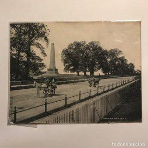 Phoenix Park. Dublin 20x15,5 cm