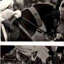Fotografía antigua: AFGANISTÁN - 4 FOTOGRAFÍAS Y 1 POSTAL - AÑOS 1960. Lote 149941446
