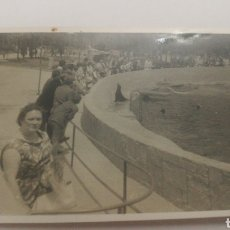 Fotografía antigua: AÑOS 50 AQUARIUM ZOO MADRID O BARCELONA FOCAS ZOOLÓGICO. Lote 152596333
