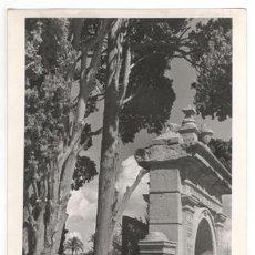Fotografía antigua: FOTOGRAFÍA: PASEO DEL MALECÓN, MURCIA. ARCO HUERTO DE LOS CIPRESES. 18'5X13. Lote 160702094