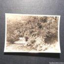 Fotografía antigua: (C-FTG.01) ANTIGUA FOTOGRAFÍA. Lote 160750457