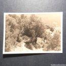 Fotografía antigua: (C-FTG.01) ANTIGUA FOTOGRAFÍA. Lote 160752650