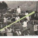 Fotografía antigua: FOTOGRAFIA PERSONAL TRANSLADANDO RACIMOS DE PLATANOS LAS PALMAS? -C-36. Lote 160839178