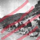 Fotografía antigua: FABARA ZARAGOZA. FALANGISTAS1954 ANTIGUO NEGATIVO ORIGINAL 9 X 6 CM. Lote 160933058