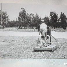 Fotografía antigua: FOTO AÑOS 50/60 EN LA ERA TRILLANDO. Lote 165733038