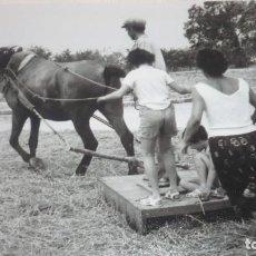 Fotografía antigua: FOTO AÑOS 50/60 EN LA ERA TRILLANDO. Lote 165758586