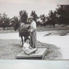 Fotografía antigua: FOTO AÑOS 50/60 EN LA ERA TRILLANDO. Lote 165760886