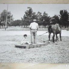 Fotografía antigua: FOTO AÑOS 50/60; EN LA ERA TRILLANDO. Lote 165780102