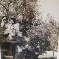 Fotografía antigua: PAREJA SUBIDA A UN ÁRBOL ESPECTACULAR. . Lote 173504494