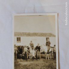 Fotografía antigua: FOTOGRAFIA CAZADORES A CABALLO, MONTERIA DE LA VIRGEN DE LA CABEZA, NOVIEMBRE 1925. Lote 179534492