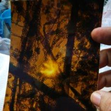 Fotografía antigua: FOTOGRAFIA ARTÍSTICA. Lote 180447420