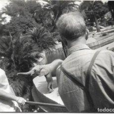 Photographie ancienne: == E822 - FOTOGRAFIA - PAREJA EN EL ZOO DE BARCELONA - 1968. Lote 183969343