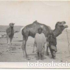 Fotografía antigua: FOTOGRAFIA DEL AAIUN. FOTO AVION. FRANCISCO GOMEZ FOTOGRAFO. 8X5,7 CM. FOTSEV-906. Lote 184089876