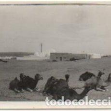 Fotografía antigua: FOTOGRAFIA DEL AAIUN. FOTO AVION. FRANCISCO GOMEZ FOTOGRAFO. 8X5,7 CM. FOTSEV-907,9. Lote 184091045