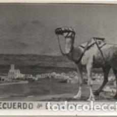 Fotografía antigua: FOTOGRAFIA DEL AAIUN. FOTO AVION. FRANCISCO GOMEZ FOTOGRAFO. 8X5,7 CM. FOTSEV-912. Lote 184091466