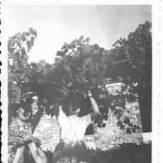 Fotografía antigua: == G1233 - FOTOGRAFÍA - MUJERES TRABAJANDO EN UNA PARRA. Lote 193219497
