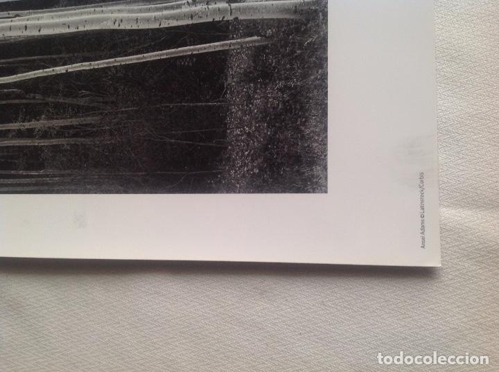 Fotografía antigua: REPRODUCCIONES FOTOGRAFÍAS ANSEL ADAMS DE LATINSTOCK/CORBIS Y W.E. SMITH/H.CARTIER DE MAGNUM PHOTOS - Foto 9 - 194231792