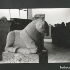 Fotografía antigua: ANTIGUA FOTOGRAFIA. Lote 194978818