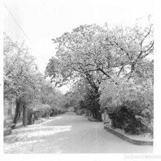 Fotografía antigua: == GG322 - FOTOGRAFIA - PAISAJE. Lote 195049950