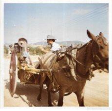 Fotografía antigua: == GG444 - FOTOGRAFIA - SEÑOR Y PERRITO EN UN CARRO. Lote 195117138