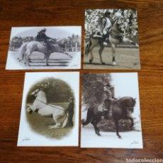 Fotografía antigua: 4 FOTOGRAFÍAS DOMA DE CABALLOS POR M PARDOS AÑOS 60 70. Lote 195470128