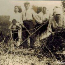 Fotografía antigua: FOTOGRAFÍA DE CAMPESINOS EN EL CAMPO. MATASELLOS FOTOGRAFÍA JAVIER, CÁCERES. TAMAÑO 168 X 115 MM. Lote 211731385