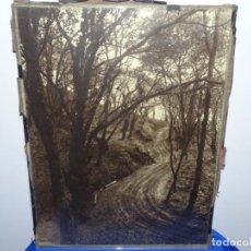 Fotografía antigua: EXCELENTE FOTOGRAFÍA FIRMADA DEL PINTOR Y FOTÓGRAFO ARTURO TRUAN VAAMONDE (GIJON 1868-1937). Lote 223846360