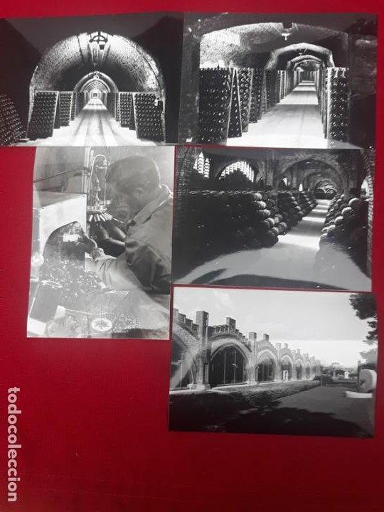 LOTE DE 5 FOTOGRAFIAS DE LA BODEGA / MUSEO CODORNIU EN SANT SADURNI D´ANOIA ( BARCELONA ) (Fotografía - Artística)