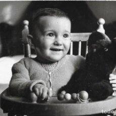 Fotografia antica: == HH516 - FOTOGRAFIA -NIÑITO CON UN OSITO DE PELUCHE 1955. Lote 240573570