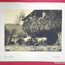 Fotografía antigua: FOTOGRAFÍA PICTORIALISTA - GOMA BICROMATADA - LA TRILLA - GRAN FORMATO - 1940'S. Lote 261683770