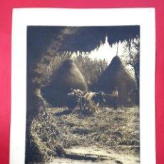 Fotografía antigua: FOTOGRAFÍA PICTORIALISTA - GOMA BICROMATADA - GRAN FORMATO - 1940'S. Lote 261684665