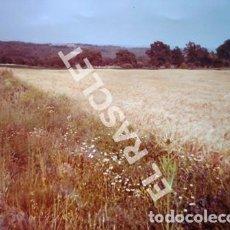 Fotografía antigua: ANTIGÜA FOTOGRAFIA EN COLOR DE CARDONA DE MEDIDAS 15 CM. X 10 CM.. Lote 261844900