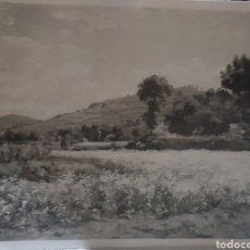 Fotografía antigua: FOTOGRAFÍA ANTIGUA DE UN PAISAJE DEL PINTOR SOLÉ JORBA. Lote 269179303