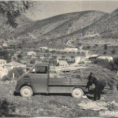 Fotografia antica: *** Z101 - FOTOGRAFIA - PEQUEÑO CAMION CARGADO DE ARBOLES PARA REPOBLAR EL MONTE - 18 X 12. Lote 277111048
