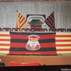 Coleccionismo deportivo: FOTOGRAFÍA PENYA BARCELONISTA VILANOVA I LA GELTRÚ, 17'5X12'5CM.. Lote 120942279