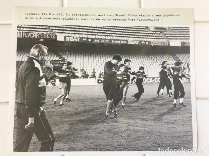 Coleccionismo deportivo: 27 FOTOGRAFIAS FUTBOL SELECCION ESPAÑOLA - AÑOS 1980 - ARCONADA, MICHEL, SATRUSTEGUI, SANTILLANA,... - Foto 27 - 133902658