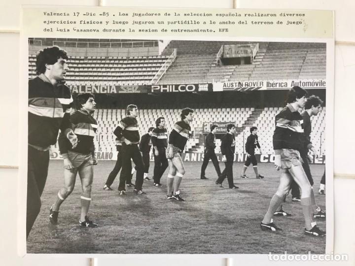 Coleccionismo deportivo: 27 FOTOGRAFIAS FUTBOL SELECCION ESPAÑOLA - AÑOS 1980 - ARCONADA, MICHEL, SATRUSTEGUI, SANTILLANA,... - Foto 31 - 133902658