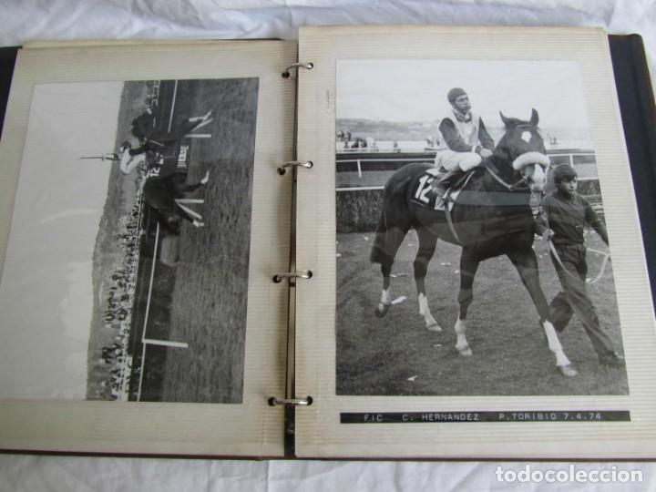 Coleccionismo deportivo: 2 álbumes de fotos de hípica años 70. Ver fotografías adicionales - Foto 20 - 158809614