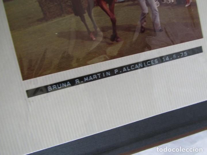 Coleccionismo deportivo: 2 álbumes de fotos de hípica años 70. Ver fotografías adicionales - Foto 30 - 158809614