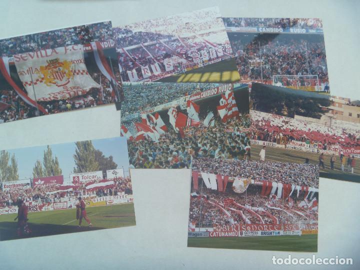 LOTE DE 7 FOTOS DE ULTRAS DEL SEVILLA. BIRIS NORTE ANTIBETICOS. (Coleccionismo Deportivo - Documentos - Fotografías de Deportes)