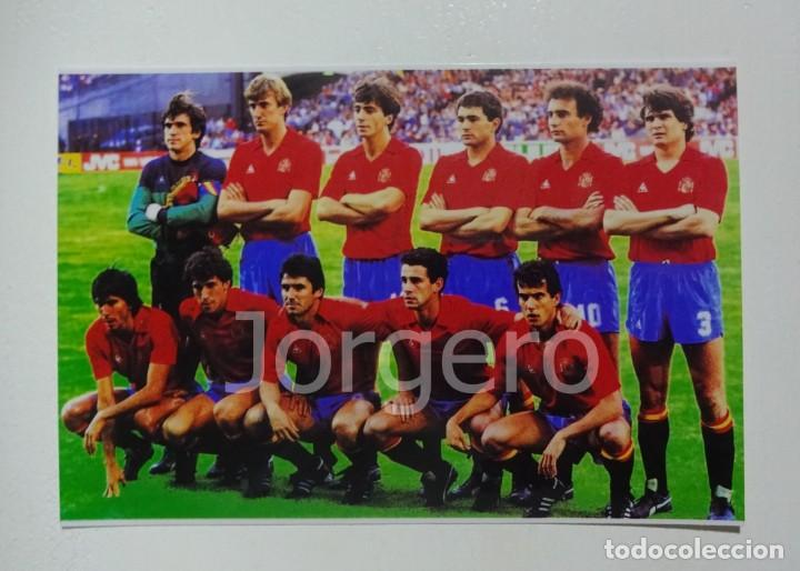 SELECCIÓN ESPAÑOLA DE FÚTBOL. ALINEACIÓN SEMIFINAL EUROCOPA 1984 EN LYON CONTRA DINAMARCA. FOTO (Coleccionismo Deportivo - Documentos - Fotografías de Deportes)