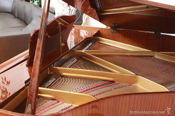 Instrumentos musicales: Piano Zimmermann Media cola - Foto 5 - 55883716